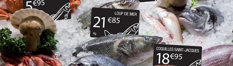 visuel-poissons-fre-1500x430-eng.jpg